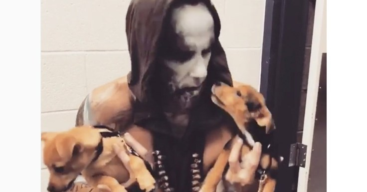 behemoth-nergal-puppies