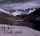 Vinsta_Wiads