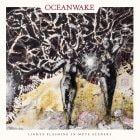 Oceanwake - Lights Flashing in Mute Secenery Cover